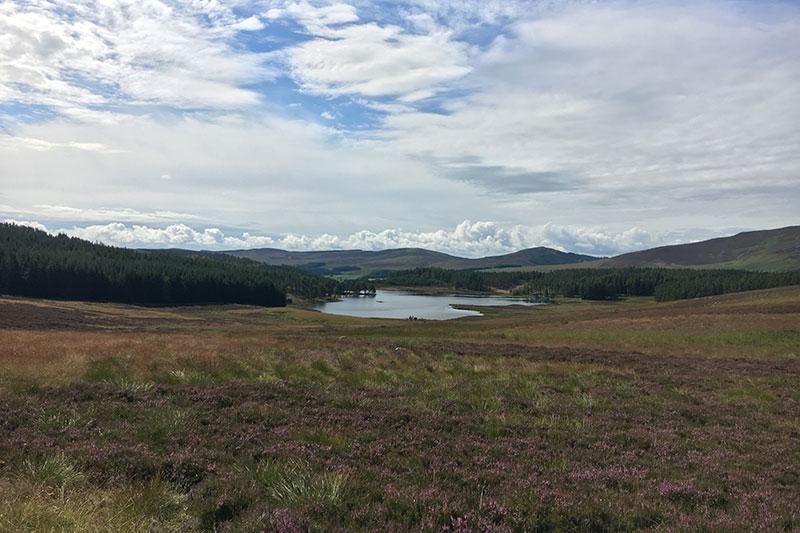 Auchentaple Loch